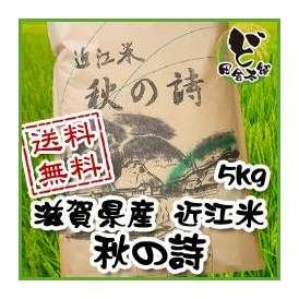 【送料無料】 28年 滋賀県産 近江米 秋の詩 5kg
