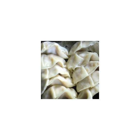 【送料無料】手作り餃子 レギュラー 10個×5 冷凍タイプ02