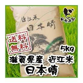 【送料無料】 28年 滋賀県産 近江米 日本晴 5kg