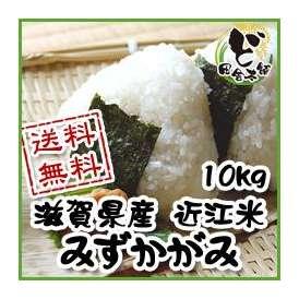 【送料無料】 28年 滋賀県産 近江米 みずかがみ 10kg