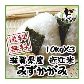 【送料無料】 28年 滋賀県産 近江米 みずかがみ 10kg×3
