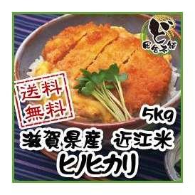【送料無料】 28年 滋賀県産 近江米 ヒノヒカリ 5kg