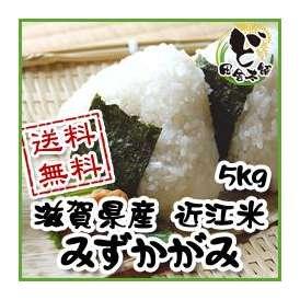 【送料無料】 28年 滋賀県産 近江米 みずかがみ 5kg