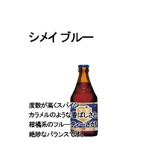 【おうちレストランシリーズ】人気No.1メニューとトラピストビールセット 牛肉のベルギービール煮込み・トラピストビール5本05