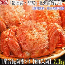 毛ガニ 北海道 雄武産(特大)570g前後×4尾(北海道産 ボイル済み 最高級)甘い蟹身 濃厚な蟹味噌は絶品。ギフトに大好評、高評価ありがとうございます!