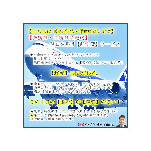 北海道産 生筋子 生イクラ 道東産 2kg(6-10本前後 北海道 獲れたて 未味味無)生いくらは鮮度が命、だから航空便で翌日お届け、高評価ありがとうございます!05