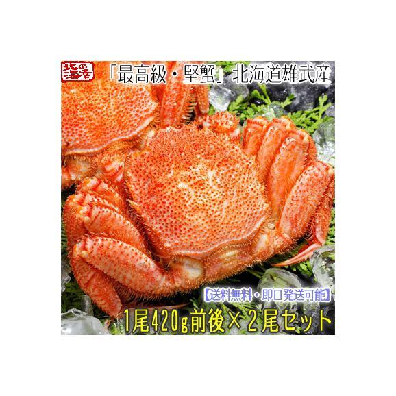 毛ガニ 北海道 雄武産(大型)420g前後×2尾 (北海道産 ボイル済み 最高級)甘い蟹身 濃厚な蟹味噌は絶品。ギフトに大好評、高評価ありがとうございます!01
