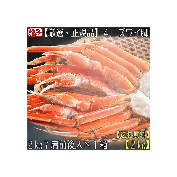 ズワイガニ 2kg(足 脚 特大)4L ズワイガニ 2kg 7肩前後×1箱(蟹足 蟹脚 北海道直送 最高級 ボイル済)甘く繊細な蟹身は絶品。高評価ありがとうございます!01