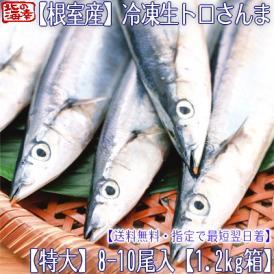 北海道(冷凍)生サンマ (特大)8-10尾 1.2kg箱(北海道産 日帰り 生さんま 冷凍 根室産)獲れたて急速冷凍、塩焼きに最高です。高評価ありがとうございます!