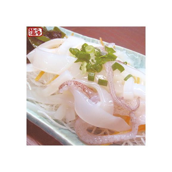 北海道 函館産 特大 スルメイカ(3-5杯)1.2kg箱(船上急速冷凍品)お刺身 塩辛 いか焼きに大好評 冷凍生イカ、ギフトに大好評、高評価ありがとうございます!02