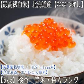 ななつぼし 北海道産(白米)5kg×1 (北海道 29年産 最高級 一等米 特A)JA北海道、ホクレン入荷米、ギフトにも大好評、高評価ありがとうございます!