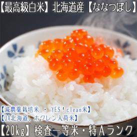 ななつぼし 北海道産(白米)20kg (10kg×2 北海道 29年産 最高級 一等米 特A)JA北海道、ホクレン入荷米、ギフトにも大好評、高評価ありがとうございます!