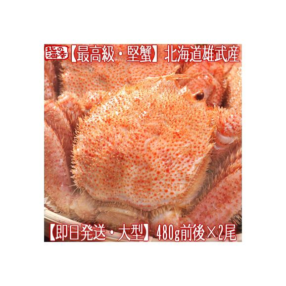 毛ガニ 北海道 雄武産(大型)480g前後×2尾(北海道産 ボイル済み 最高級)甘い蟹身 濃厚な蟹味噌は絶品。ギフトに大好評、高評価ありがとうございます!01