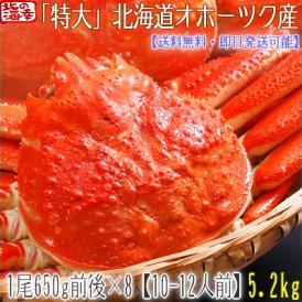 ズワイガニ(特大 姿)北海道産 650g前後×8尾(最高級 ボイル済 北海道)甘い蟹身、濃厚な蟹味噌は絶品。ギフトに大好評、高評価ありがとうございます!