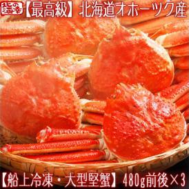 ズワイガニ(大型 姿)北海道産 480g前後×3尾(最高級 ボイル済 北海道)甘い蟹身、濃厚な蟹味噌は絶品。ギフトに大好評、高評価ありがとうございます!