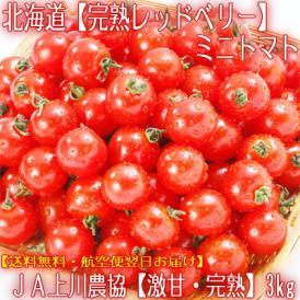 北海道産 トマト 完熟 レッドベリー 3kg (ミニトマト 秀品 北海道 完熟)大地の香りと、上品な甘みに感動。ギフトにも大好評、高評価ありがとうございます!