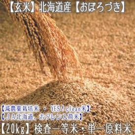 おぼろづき 北海道産(玄米)20kg (10kg×2 北海道 29年産 最高級 一等米 特A)JA北海道、ホクレン入荷米、ギフトにも大好評、高評価ありがとうございます!