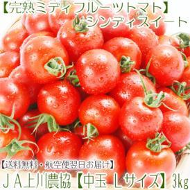 北海道産 シンディスイート L中玉 3kg (フルーツトマト 秀品 北海道 JA上川)人気の新品種、絶妙なバランス。ギフトにも大好評、高評価ありがとうございます!