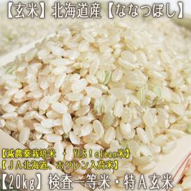 ななつぼし 北海道産(玄米)20kg (10kg×2 北海道 29年産 最高級 一等米 特A)JA北海道、ホクレン入荷米、ギフトにも大好評、高評価ありがとうございます!