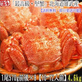 毛ガニ 北海道 雄武産(特大)570g前後×8尾(北海道産 ボイル済み 最高級)甘い蟹身 濃厚な蟹味噌は絶品。ギフトに大好評、高評価ありがとうございます!