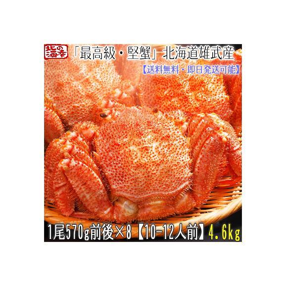 毛ガニ 北海道 雄武産(特大)570g前後×8尾(北海道産 ボイル済み 最高級)甘い蟹身 濃厚な蟹味噌は絶品。ギフトに大好評、高評価ありがとうございます!01