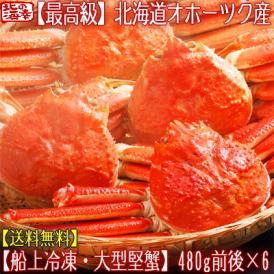 ズワイガニ(大型 姿)北海道産 480g前後×6尾(最高級 ボイル済 北海道)甘い蟹身、濃厚な蟹味噌は絶品。ギフトに大好評、高評価ありがとうございます!