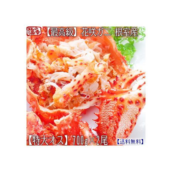 花咲ガニ 北海道 根室産(オス)700g前後×2尾(北海道産 ボイル済み 堅蟹 最高級)甘く濃厚な蟹身は絶品。ギフトに大好評、高評価ありがとうございます!01