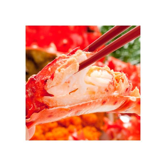 花咲ガニ 北海道 根室産(オス)700g前後×2尾(北海道産 ボイル済み 堅蟹 最高級)甘く濃厚な蟹身は絶品。ギフトに大好評、高評価ありがとうございます!02