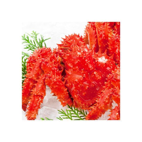 花咲ガニ 北海道 根室産(オス)700g前後×2尾(北海道産 ボイル済み 堅蟹 最高級)甘く濃厚な蟹身は絶品。ギフトに大好評、高評価ありがとうございます!03
