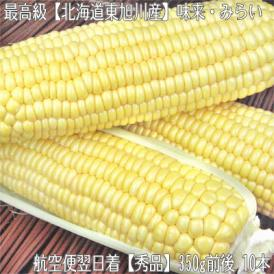 北海道産 味来 みらい 大粒 2L 10本(北海道 未来 最高級 トウモロコシ)北の大地の香りと上品な甘み、ギフトにも大好評、高評価ありがとうございます!