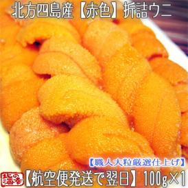 ウニ 北海道(折詰)生エゾバフンウニ(赤色)100g (北方四島産 うに)濃厚さが分かる職人技の折うに。ギフトにも大好評です、高評価ありがとうございます!
