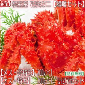 花咲ガニ 北海道 根室産(オス メス セット)2尾(オス700g前後 メス700g前後 北海道産 ボイル済み)甘く濃厚な蟹身は絶品。高評価ありがとうございます!