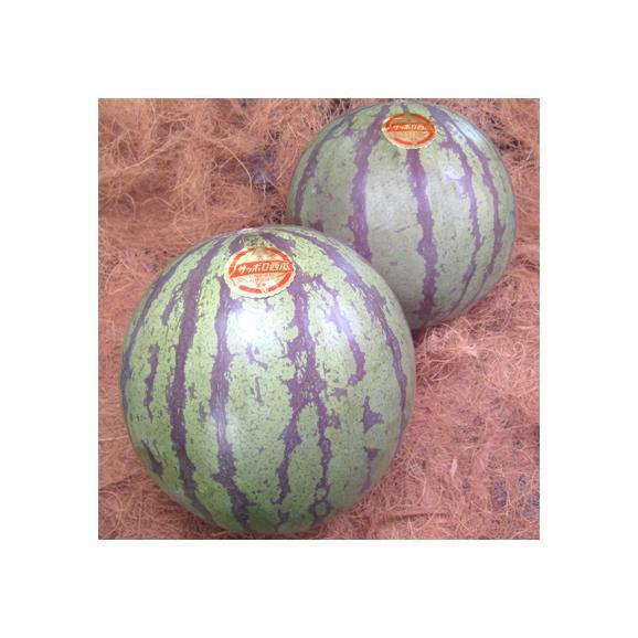 北海道産 スイカ さっぽろ西瓜 2玉で 8-10kg箱(最高級 大玉 優品 サッポロスイカ)赤く瑞々しい上品な甘味!ギフトにも大好評、高評価ありがとうございます!03