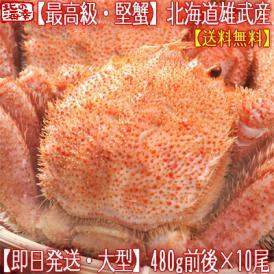 毛ガニ 北海道 雄武産(大型)480g前後×10尾(北海道産 ボイル済み 最高級)甘い蟹身 濃厚な蟹味噌は絶品。ギフトに大好評、高評価ありがとうございます!