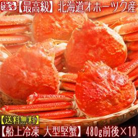 ズワイガニ(大型 姿)北海道産 480g前後×10尾(最高級 ボイル済 北海道)甘い蟹身、濃厚な蟹味噌は絶品。ギフトに大好評、高評価ありがとうございます!