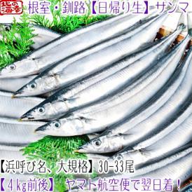 北海道 生サンマ (大、浜呼び名)4kg前後 30尾前後(北海道産 生さんま 根室 釧路 厚岸 翌日着)鮮度が命、氷の量も一目瞭然、高評価ありがとうございます!