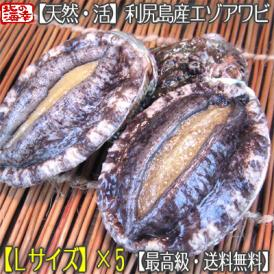 北海道 利尻島産(活 L)エゾアワビ 100g×5(北海道産 最高級 黒あわび)利尻昆布を食べて育った最高級品。ギフトにも大好評、高評価ありがとうございます!