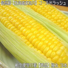 北海道産 ゴールドラッシュ 大粒 2L 10本(北海道 トウモロコシ 350g前後)北の大地の香りと上品な甘み、ギフトにも大好評、高評価ありがとうございます!