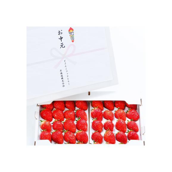 北海道産 いちご イチゴ さがほのか 600g (大粒 3L-2L 北海道 JA富良野 JA上川地域 秀品)上品で濃厚な味、ギフトにも大好評、高評価ありがとうございます!03
