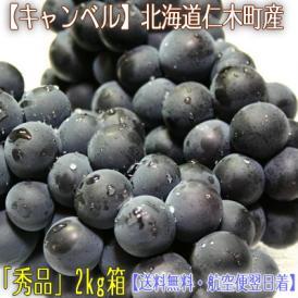 北海道 ぶどう 仁木産 キャンベル 2kg 8房前後(北海道産 ブドウ 秀品)昔ながらの 酸味のある甘み。ギフトにも大好評、高評価ありがとうございます!