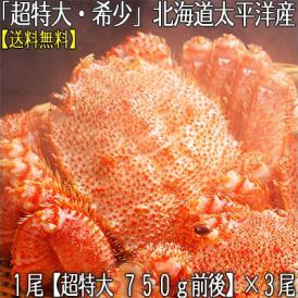 毛ガニ 北海道産(超特大)750g前後×3尾(北海道 太平洋産 襟裳など ボイル済み)甘い蟹身 濃厚な蟹味噌は絶品。ギフトに大好評、高評価ありがとうございます!