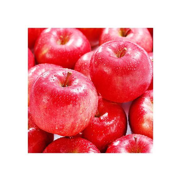 北海道産 りんご 昂林 こうりん 10kg 36玉前後(北海道 秋リンゴ JA余市 秀品)酸甘のバランスは最高傑作、ギフトにも大好評、高評価ありがとうございます!02