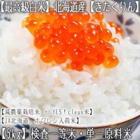きたくりん 北海道産(白米)5kg×1 (北海道 29年産 最高級 一等米 特A)JA北海道、ホクレン入荷米、ギフトにも大好評、高評価ありがとうございます!