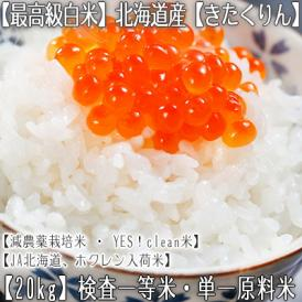 きたくりん 北海道産(白米)20kg (10kg×2 北海道 29年産 最高級 一等米 特A)JA北海道、ホクレン入荷米、ギフトにも大好評、高評価ありがとうございます!