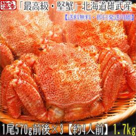 毛ガニ 北海道 雄武産(特大)570g前後×3尾(北海道産 ボイル済み 最高級)甘い蟹身 濃厚な蟹味噌は絶品。ギフトに大好評、高評価ありがとうございます!