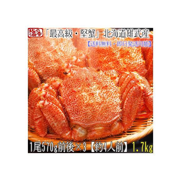 毛ガニ 北海道 雄武産(特大)570g前後×3尾(北海道産 ボイル済み 最高級)甘い蟹身 濃厚な蟹味噌は絶品。ギフトに大好評、高評価ありがとうございます!01