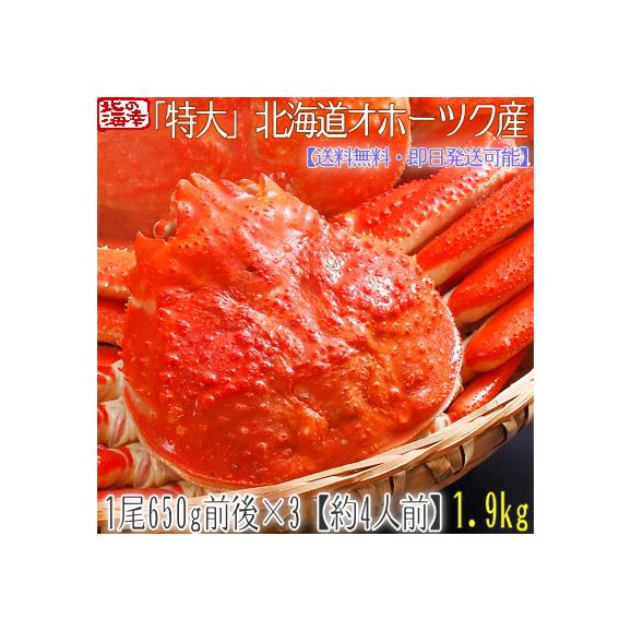 ズワイガニ(特大 姿)北海道産 650g前後×3尾(最高級 ボイル済 北海道)甘い蟹身、濃厚な蟹味噌は絶品。ギフトに大好評、高評価ありがとうございます!01