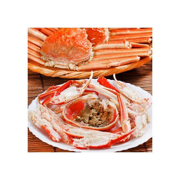 ズワイガニ(特大 姿)北海道産 650g前後×3尾(最高級 ボイル済 北海道)甘い蟹身、濃厚な蟹味噌は絶品。ギフトに大好評、高評価ありがとうございます!03