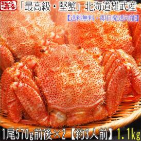 毛ガニ 北海道 雄武産(特大)570g前後×2尾(北海道産 ボイル済み 最高級)甘い蟹身 濃厚な蟹味噌は絶品。ギフトに大好評、高評価ありがとうございます!