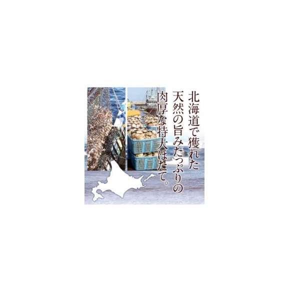 【送料無料】 2Lサイズ 北海道産ホタテ×約1kg[生食用16~20粒]天然ホタテ貝柱 2Lサイズ 北海道産ホタテ×約1kg[生食用16~20粒]天然ホタテ貝柱03